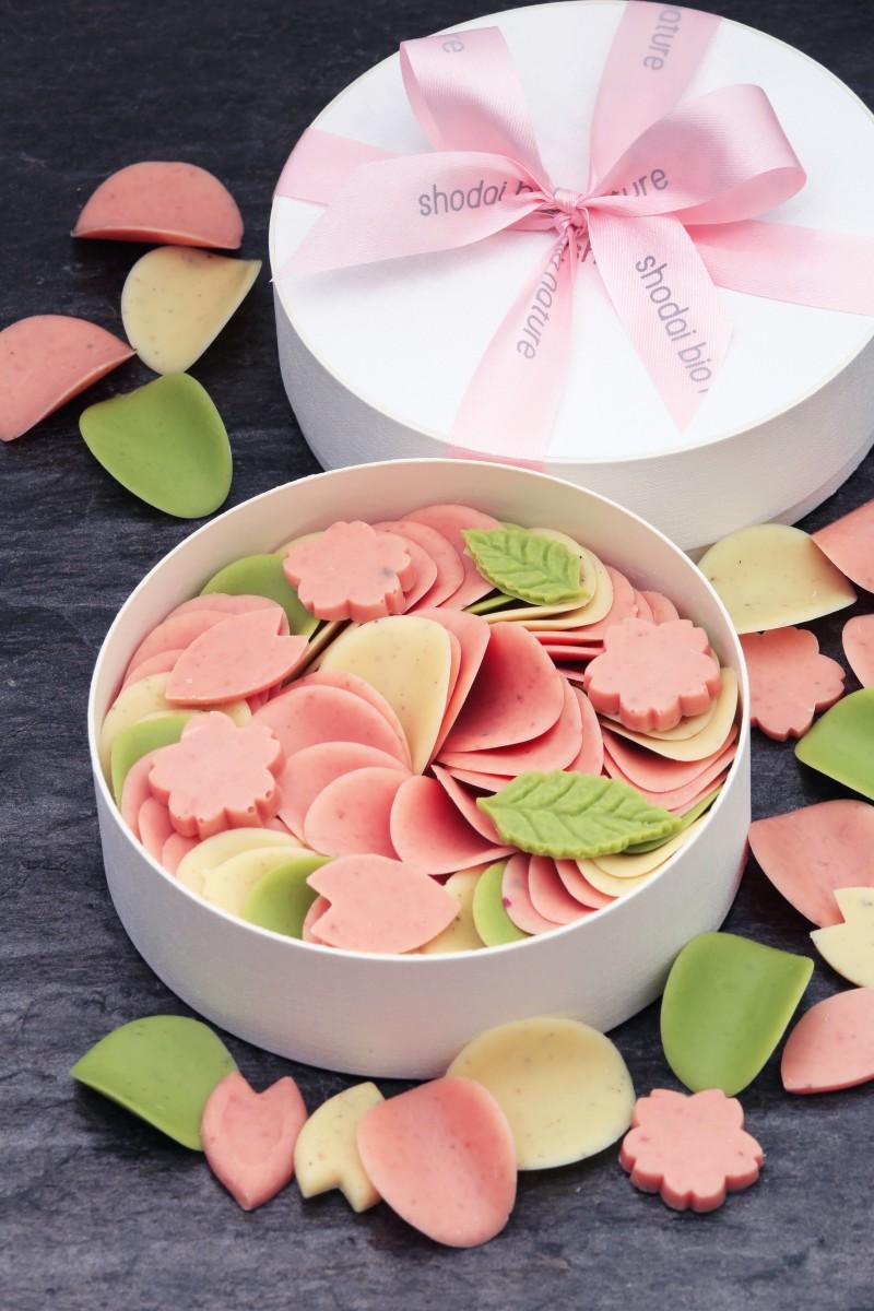 桜彩華のペタル