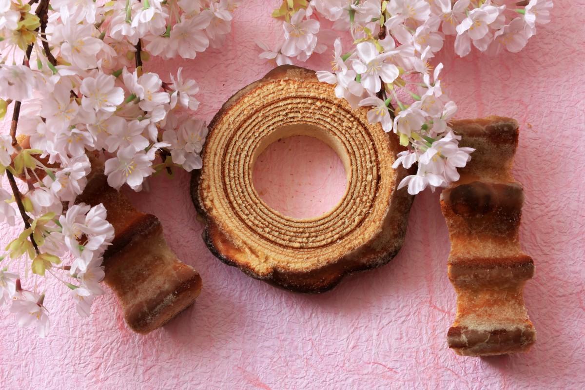 桜花蜜のバウムクーヘン
